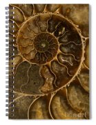 An Ancient Ammonite Pattern II Spiral Notebook