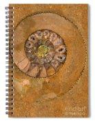 An Ancient Treasure I Spiral Notebook