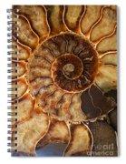 An Ancient Treasure II Spiral Notebook