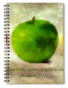 An Apple A Day With Proverbs Spiral Notebook