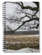 An Appleton Tree And Field In Winter Spiral Notebook