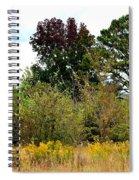 An Autumn Day In Alabama Spiral Notebook