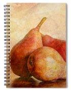 An Autumn Harvest II Spiral Notebook