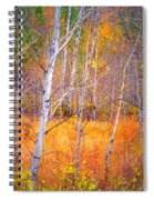 An Autumn Symphony Of Colour Spiral Notebook