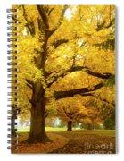 An Autumn Walk - 2 Spiral Notebook