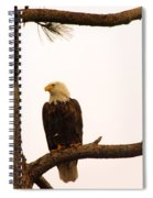 An Eagle Day Dreaming Spiral Notebook