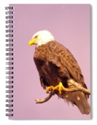 An Eagle Hanging Out Spiral Notebook
