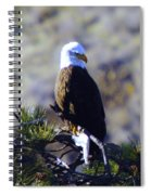 An Eagle In The Sun Spiral Notebook