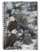An Eagle Pair  Spiral Notebook