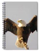 An Eagle Posing  Spiral Notebook