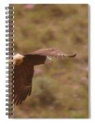 An Eagle Turns  Spiral Notebook