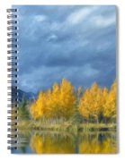 An Early Snowfall Spiral Notebook