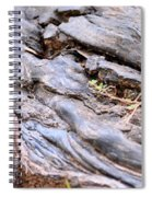 An Earthen Abstract Spiral Notebook