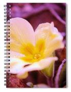 An Open Bud Spiral Notebook