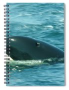An Orca Surfaces  Spiral Notebook