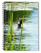 An Out Of Focus Flap  Spiral Notebook