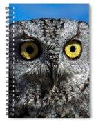 An Owl Spiral Notebook