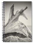 Analog Photography - Driftwood Spiral Notebook
