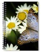 Anartia Jatrophae Spiral Notebook