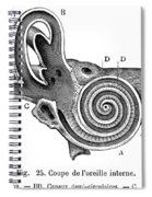 Anatomy: Middle Ear Spiral Notebook