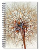 Anatomy Of A Weed High Key  Spiral Notebook