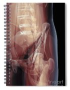 Anatomy Of The Hip Joint Spiral Notebook