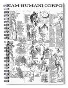 Anatomy Of The Human Body  1728 Spiral Notebook