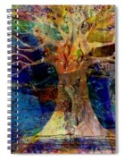 Ancestral Place  Spiral Notebook