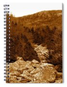 Ancient Brook - Sepia Tones Spiral Notebook