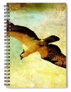 Ancient Hunter Spiral Notebook