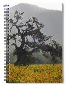 Ancient Oak Spiral Notebook