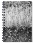 Ancient Sagebrush 2 Spiral Notebook