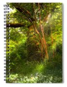 Ancient Tree Spiral Notebook