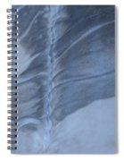 Ancient Upholstery Spiral Notebook