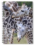 And Baby Makes Three Spiral Notebook