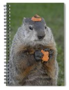 And Have You Looked In The Mirror Lately Spiral Notebook