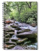 ...and The Creek Don't Rise Spiral Notebook