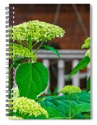 And The Livin' Is Easy Spiral Notebook