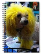 Andrew The Poodle Spiral Notebook
