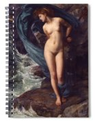 Andromeda Spiral Notebook