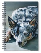 Andy Spiral Notebook