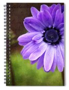 Anemone Kissed Spiral Notebook