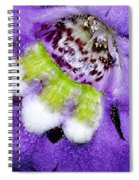 Angel Face Blue - With Extra Petals And 3 Stamen Spiral Notebook