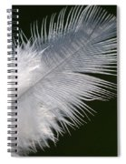 Angel Feather Spiral Notebook