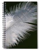 Angel Feather Spiral Notebook