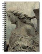 Angel Hair Spiral Notebook
