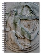 Angel In A Wall Spiral Notebook
