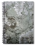 Angel In Disguise Spiral Notebook