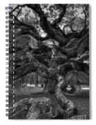 Angel Oak Tree 2 Spiral Notebook