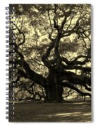 Angel Oak Tree Sepia Spiral Notebook